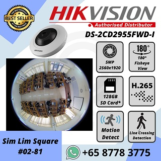 HIKVISION 5MP FishEye H.265 180 degree SD Storage DS-2CD2955FWD-I